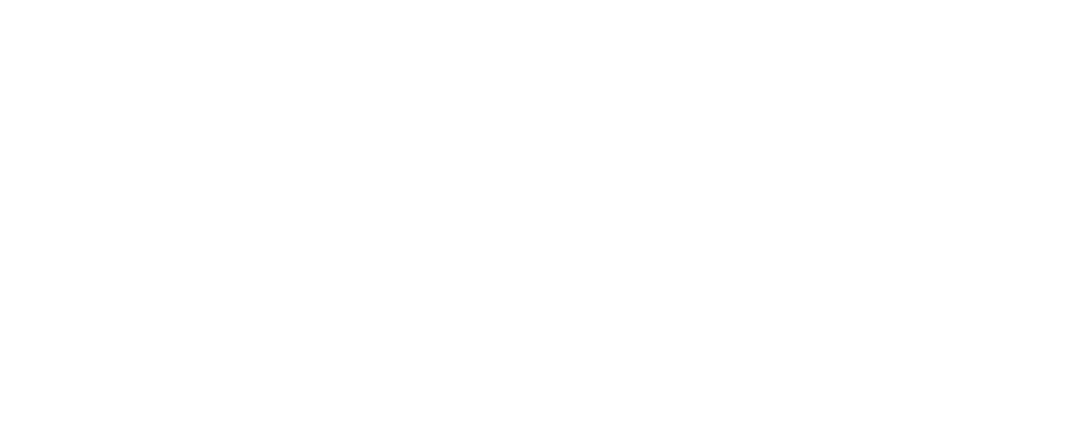 Logo evo white