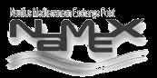 Logo Namex grigio